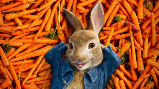 兔子卡通人物彼得兔历险记,2018年