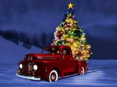 在卡车背面的新年树