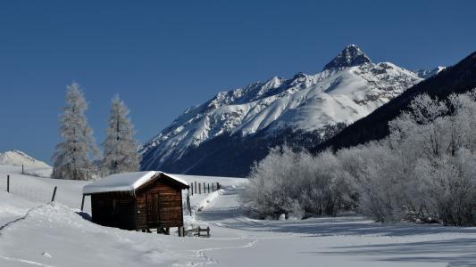 在山上的木房子