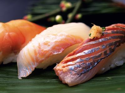 寿司鱼准备