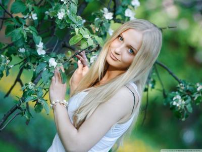 金发碧眼的一棵开花的树