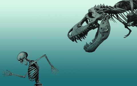 恐龙的骨骼正在追逐人类的骨骼