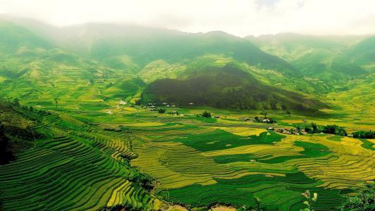 绿色的田野,在一个山谷里