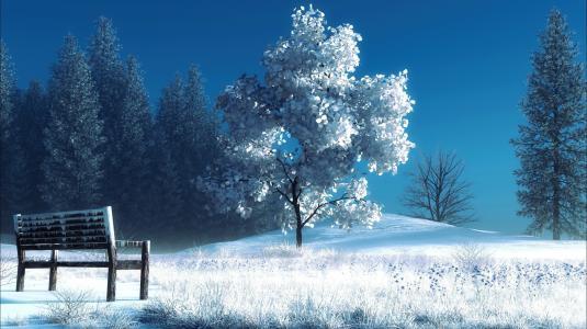 雪,树,长凳,样式