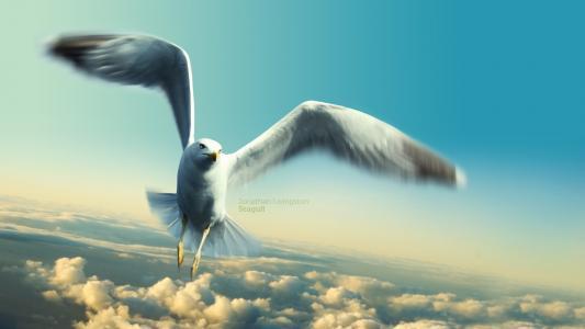 乔纳森利文斯顿海鸥