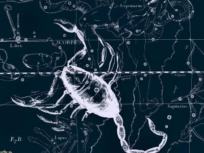 星图,蝎子
