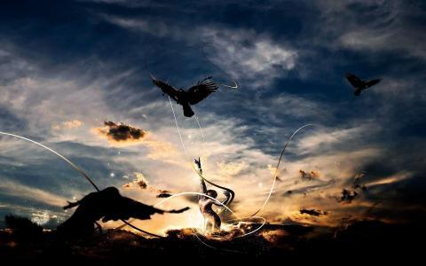 鸟渴望自由