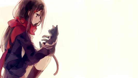 动漫女孩手里拿着一只猫,动漫Kagerou项目