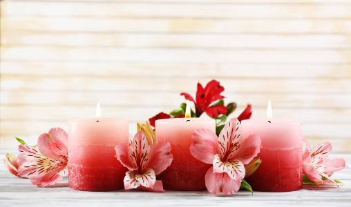 三个粉红色的蜡烛与阿玛丽利斯花