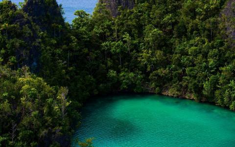 绿松石湖在雨林里
