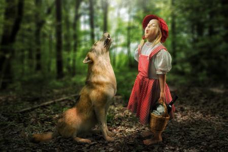 一顶红色的帽子服装与一只狼在森林里的小女孩
