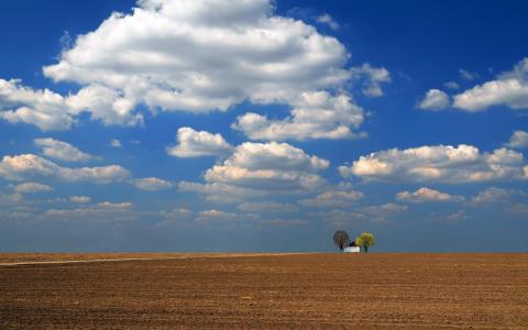 在一个耕田之中的孤独的结构