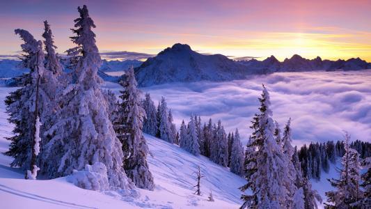 魔术冬季景观在山中