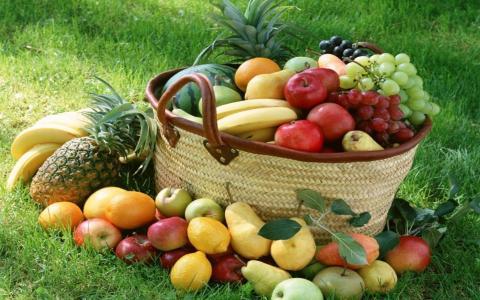 在绿色的草坪上的各种水果篮子