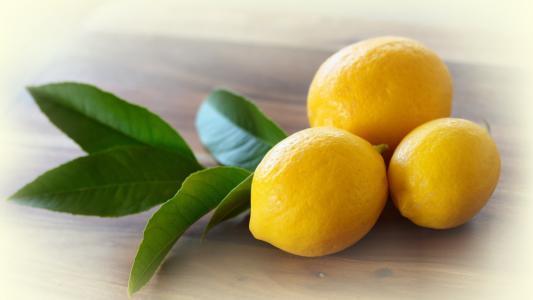 三棵柠檬与树枝