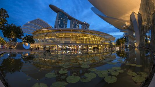 新加坡艺术和科学博物馆附近的池塘。