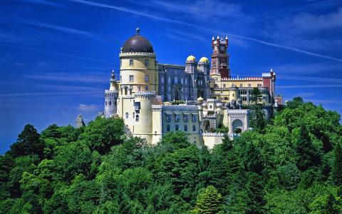 树上的小山上的童话城堡
