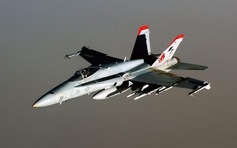 F-18在灰色的背景上的大黄蜂战斗机