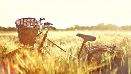 自行车在外地