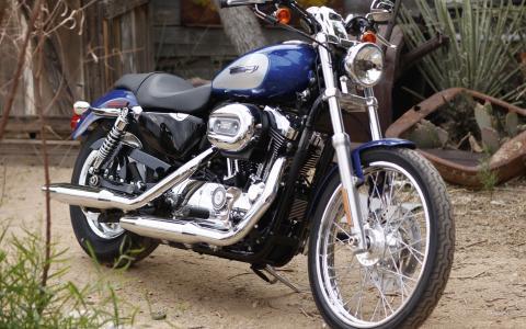 新的可靠的摩托车哈雷戴维森XL 1200C Sportster定制