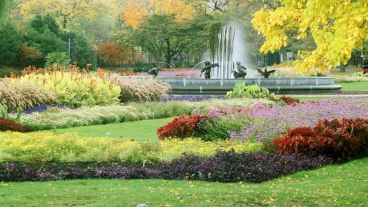 在芝加哥的喷泉