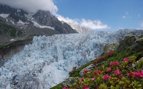 在山上的冰川