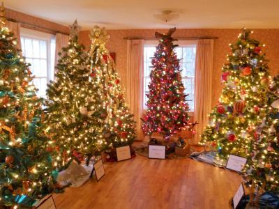 许多圣诞树