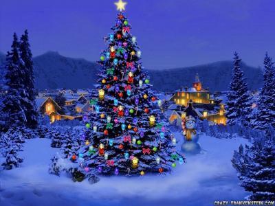 圣诞树装饰在性质上
