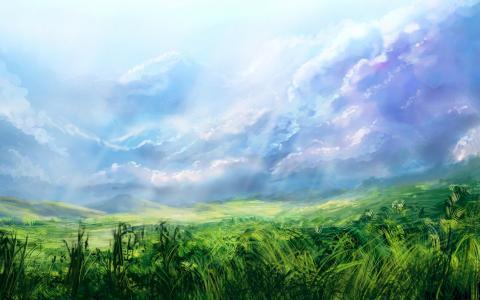 在草地上的蓝天