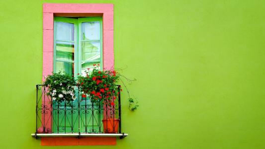 在绿色墙壁上的窗口