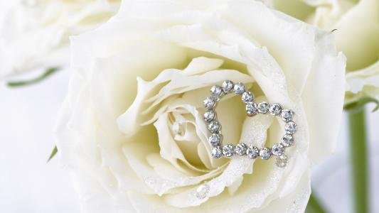 白玫瑰和一颗白色宝石的心