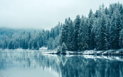 美丽的冬天,不列颠哥伦比亚省,