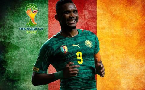 喀麦隆国家队球员在2014年巴西世界杯的世界杯