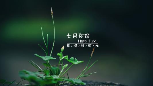 于清新时节遇见最美的7月