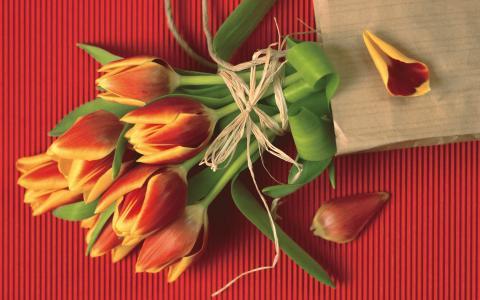 3月8日的花
