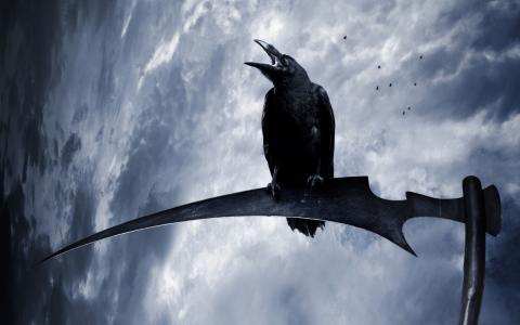 在唾液的乌鸦