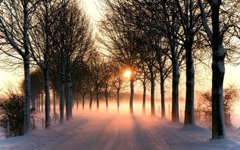 在日落的冬天路