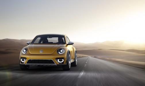 汽车品牌大众甲壳虫沙丘2014年