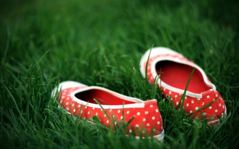 拖鞋在草地上