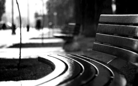 弯曲的长凳在雨中
