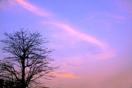 冬日夕阳蓝天风光