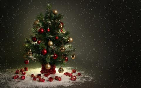 在雪中的小圣诞树