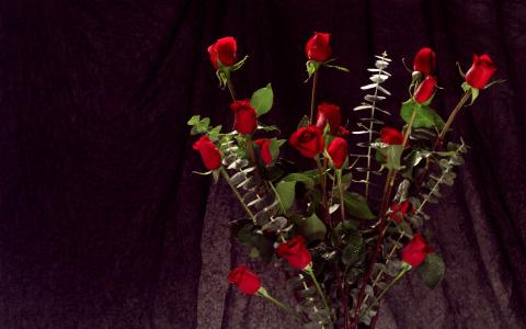 一束红玫瑰,鲜花