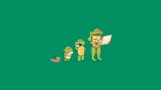 忍者龟的成长
