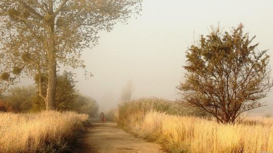 孤独的人在路上