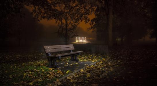 孤独的长凳在秋天的公园在晚上