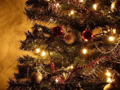 圣诞树新的一年