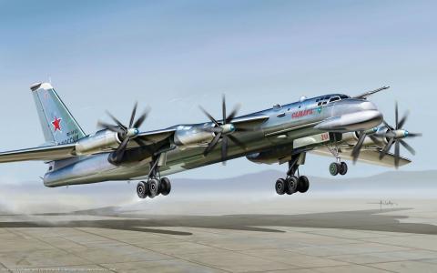 俄罗斯的图-95飞机