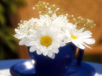白色发光的鲜花