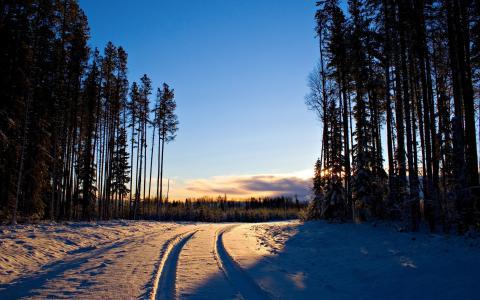 积雪覆盖的道路在晚上